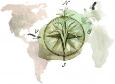 Den koloniala skulden